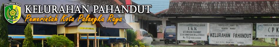 Kelurahan Pahandut